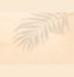 palm leaf shadow on light pink background vector image
