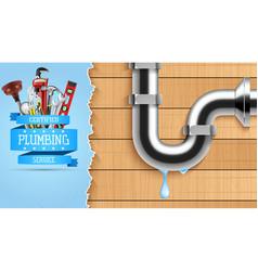 plumbing service with repair tools vector image