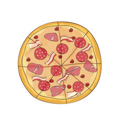 Ready pizza with bacon ham and salami vector