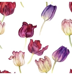 seamless pattern with watercolor tulip vector image vector image