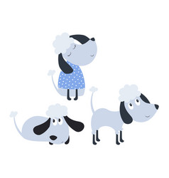 set with cute poodles vector image
