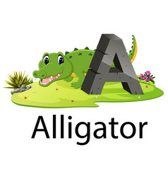 zoo animal alphabet a for alligator vector image