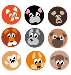 image animal beasts icons vector image vector image