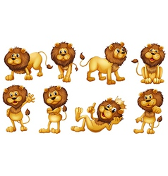 Brave lions vector image vector image