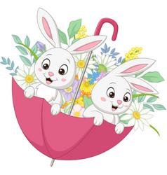 cute two bunnies in spring umbrella vector image