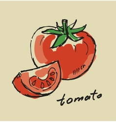 hand drawn tomato vector image