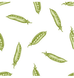 seamless pattern with hand drawn pastel peas vector image