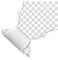 Torn upper right corner sheet white paper vector