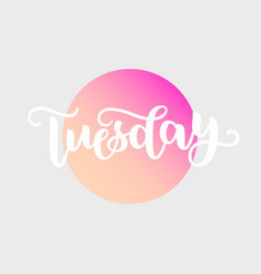 Tuesday handwriting font by calligraphy vector