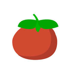 Tomato icon in flat style isolated object vector