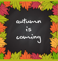 chalkboard with autumn maple leaves vector image vector image