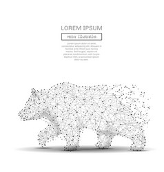 bear low poly gray vector image