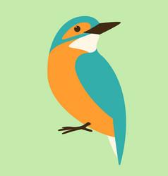bird kingfisher flat style vector image