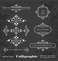 Calligraphic elements for design on chalkboard vector