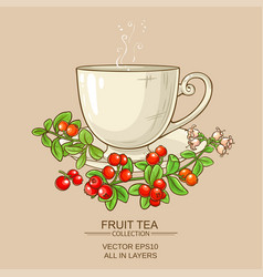 Cup of cranberry tea vector