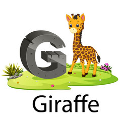 cute zoo animal alphabet g for giraffe vector image