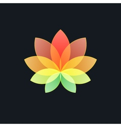 Multicolored Translucent Flower on Black vector
