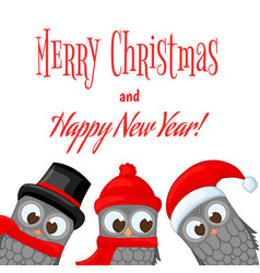 owls in santa claus hat and scarf postcard for vector image