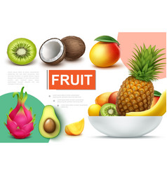 realistic natural fruits composition vector image
