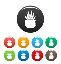 Round pot aloe icons set color vector