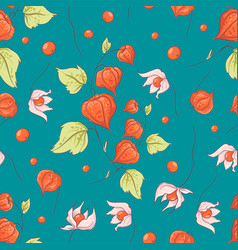 seamless pattern autumn physalis flowers leaves vector image