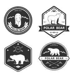 Vintage bear icons mascot emblems and vector image