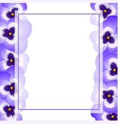 Violet pansy flower banner card border vector