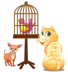 group cute animals with bird cage cartoon vector image