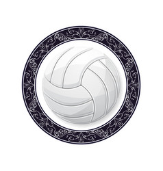 volleyball with circle pattern vector image
