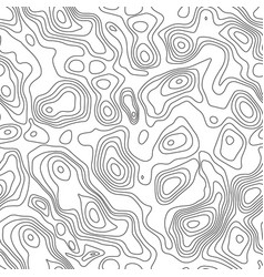 line topographic contour map background seamless vector image vector image