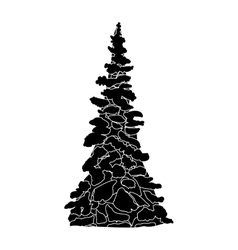 black and White Christmas tree silhouette vector image