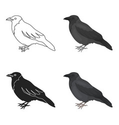 Crow icon in cartoon style isolated on white vector