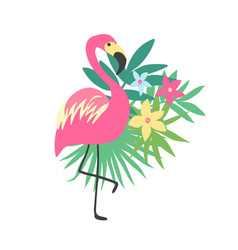flamingo tropical bird design vector image