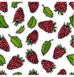 Raspberry and mint leaves doodle style vector