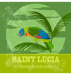 Saint Lucia national symbols Amazona versicolor vector