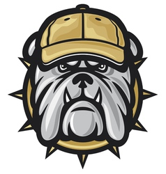 Bulldog head and baseball cap vector image