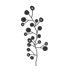 gray scale branch olive with fruits vector image
