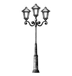 sketch of street light vector image vector image