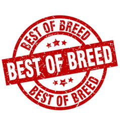 Best of breed round red grunge stamp vector