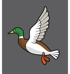 Flying duck vector