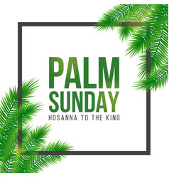 Palm sunday holiday card poster with leaves vector