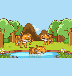 Scene with many tigers in forest vector