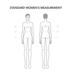 Standart womens measurements fashion terminology vector