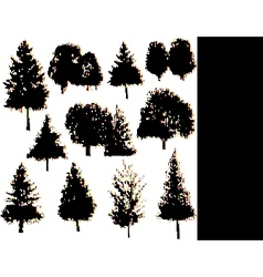 tree silhouettes collection set vector image