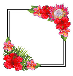 Tropical flowers bouquet elements at corners of vector