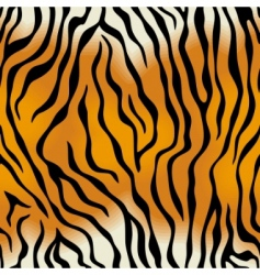 seamless texture of tiger skin vector image
