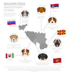 Dogs by country of origin balkans dog breeds vector