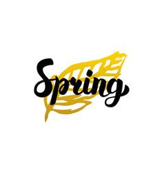 handwritten calligraphy spring vector image