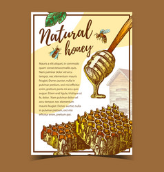 honeycomb and wooden dipper stick poster vector image
