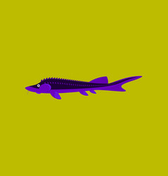 In flat style sturgeon vector
